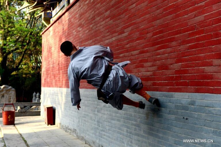 Application of traditional shaolin kungfu